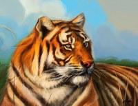 Wholesale, Lot 600. Tiger Balm Wild 18.4gr
