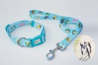 pet leash and collar for dog -ODM and OEM are welcome