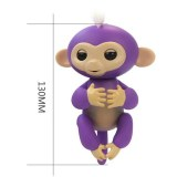 Cenocco CC-9048; Happy Monkey Purple