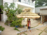 Thatch Umbrella, Bamboo Poles, Outdoor Furniture