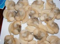 100% Frozen Locos, Chilean Abalone for sale