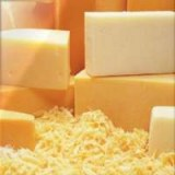 Mozzarella Cheese, Gouda Cheese, Edam Cheese and Cheddar Cheese