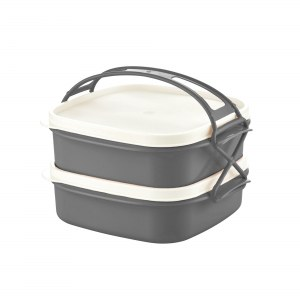 Herzberg 2-Layer Tetra Lunch Box