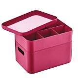Herzberg HG-OKY676: 2 Layer Multipurpose Organizer Box Pink